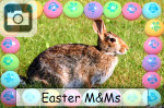 easter mms candy candies pastel bunny rabbits