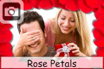 rose petals flowers romantic love valentines day
